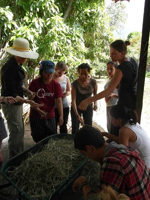 Communal work in Huitzo. Picture by Andrea Roeland